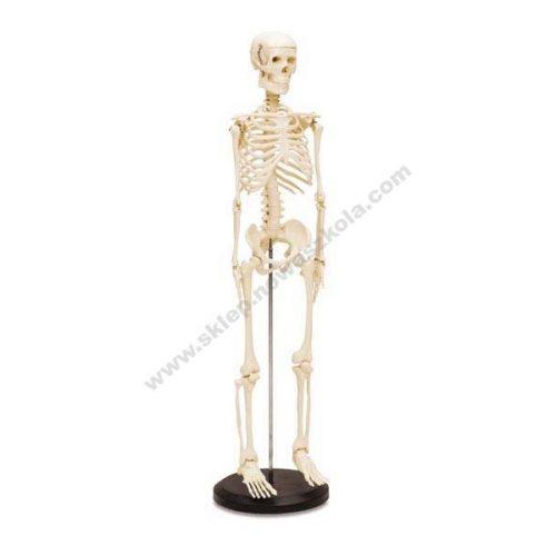 VO6188 3D lik malog kostura čovjeka