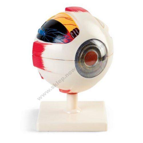 VO6192 3D lik ljudskog oka